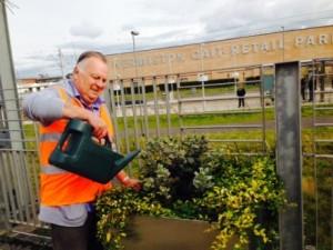 Gordon watering plants
